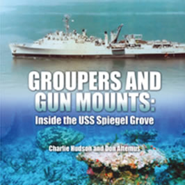 groupers and gun mounts inside the uss spiegel grove. Black Bedroom Furniture Sets. Home Design Ideas